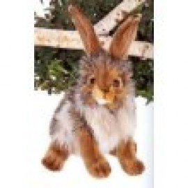 Bunny Rabbit #3581 - Hansa Realistic Soft Toys & Plush Stuffed Animals